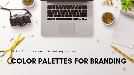 Color Palettes for Branding