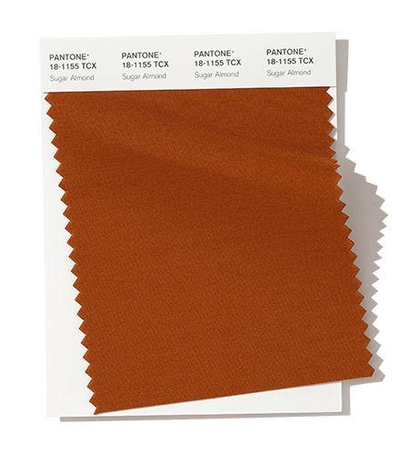 Pantone SugarAlmond Fall & Winter Color Trends
